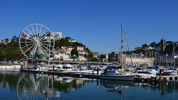 Starting a business in Torquay